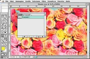 NOEMA > SPECIALS > Immagine elettronica